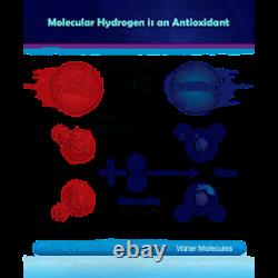 100 GPD 10 Stage Alkaline Reverse Osmosis System/Hydrogen Water Generator