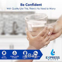10 Stage Alkaline pH+ Reverse Osmosis Water Filter System Pressure Gauge 100 GPD