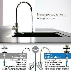 Reverse Drinking Water Douche Filtration System 6 Stage Alkaline Under Sink